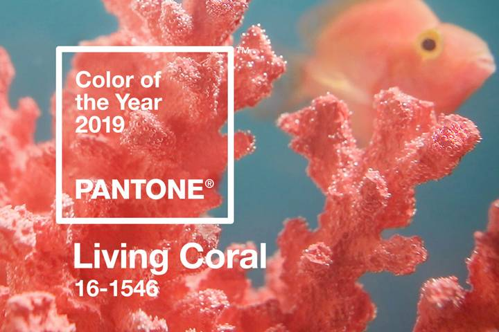 Pantone's Color Of The Year For 2019 – Living Coral And How To Incorporate It Into Your Wedding Design